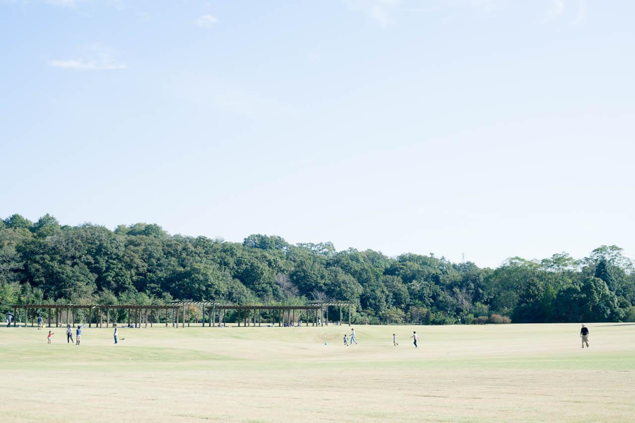 緑化センター・昭和の森 人が少ない